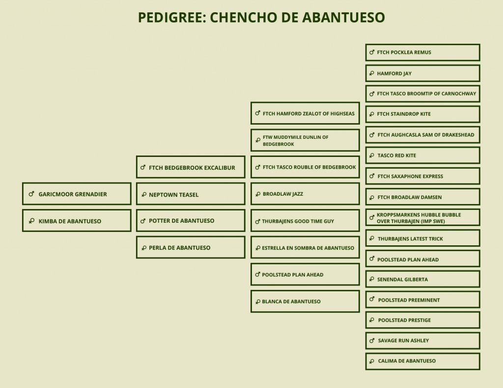 PEDIGREE CHENCHO