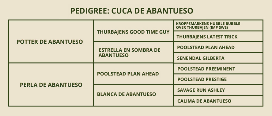 PEDIGREE-CUCA