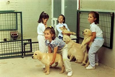 ninas_y_cachorros