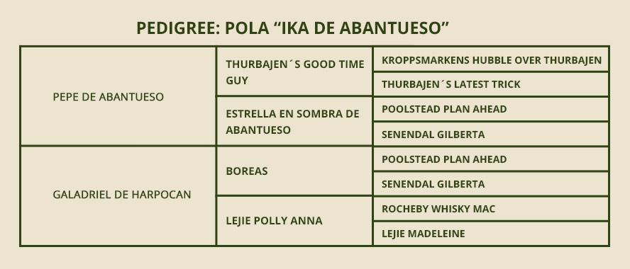 pedigree-pola