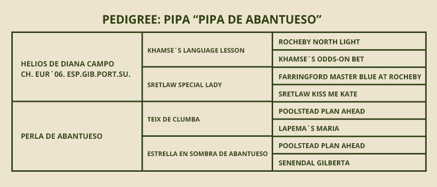 PEDIGREE-Pipa